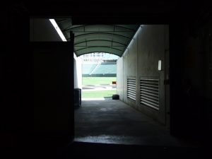 Bengals tunnel